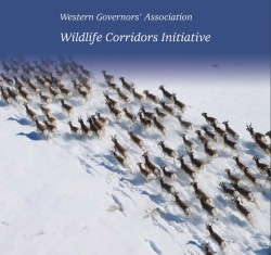 Wildlife Corridors Initiative