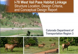 I-70 West Vail Pass Habitat Linkage: Structure Location, Design Criteria, and Conceptual Design Report