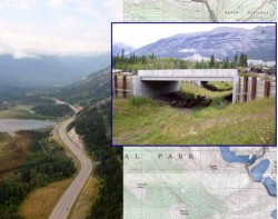 Wildlife Crossing Structure Handbook: Design and Evaluation in North America