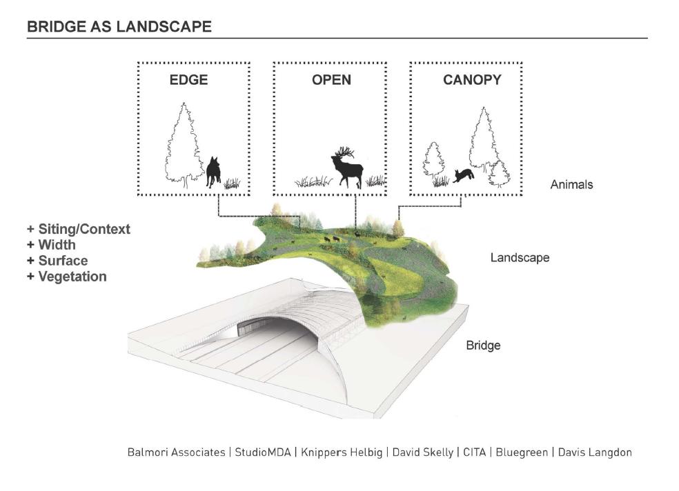 Balmori Birdge as Landscape