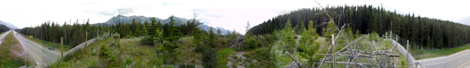 Banff_Corssing_Animal_View