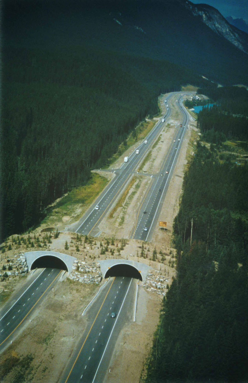 Banff_Crossing_Aerial TC
