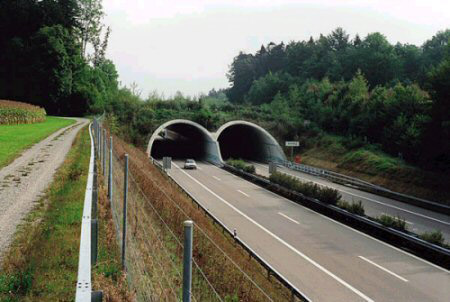 WildlifeOverpass-Europe