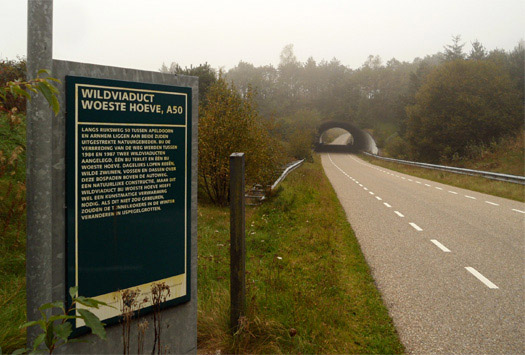 Wildlife_Crossing_Dutch_Signage
