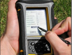 Researchers Develop Handheld Tool to Collect and Map Wildlife-Vehicle Collision Data