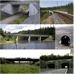 Effect of conventional bridges on deer-vehicle accidents