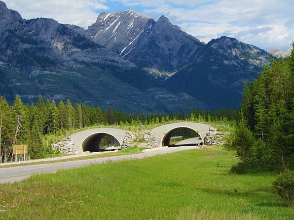 2-World Geo Banff
