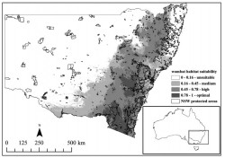 Linking habitat suitability and road mortalities across geographic ranges