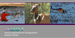 Wildlife Accident Reduction Study and Monitoring: Arizona State Route 64