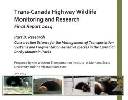 Trans‐Canada Highway Wildlife and Monitoring Research, Final Report. Part B: Research