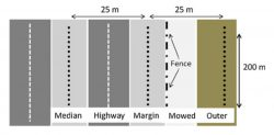 Highway Verges as Habitat Providers for Small Mammals in Agrosilvopastoral environments
