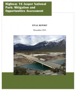 Highway 16 Jasper National Park: Mitigation and Opportunities Assessment