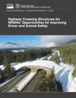 Highway Crossing Structures for Wildlife: Opportunities for Improving Driver and Animal Safety