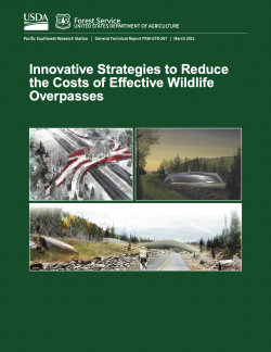 Innovative strategies to reduce the costs of effective wildlife overpasses