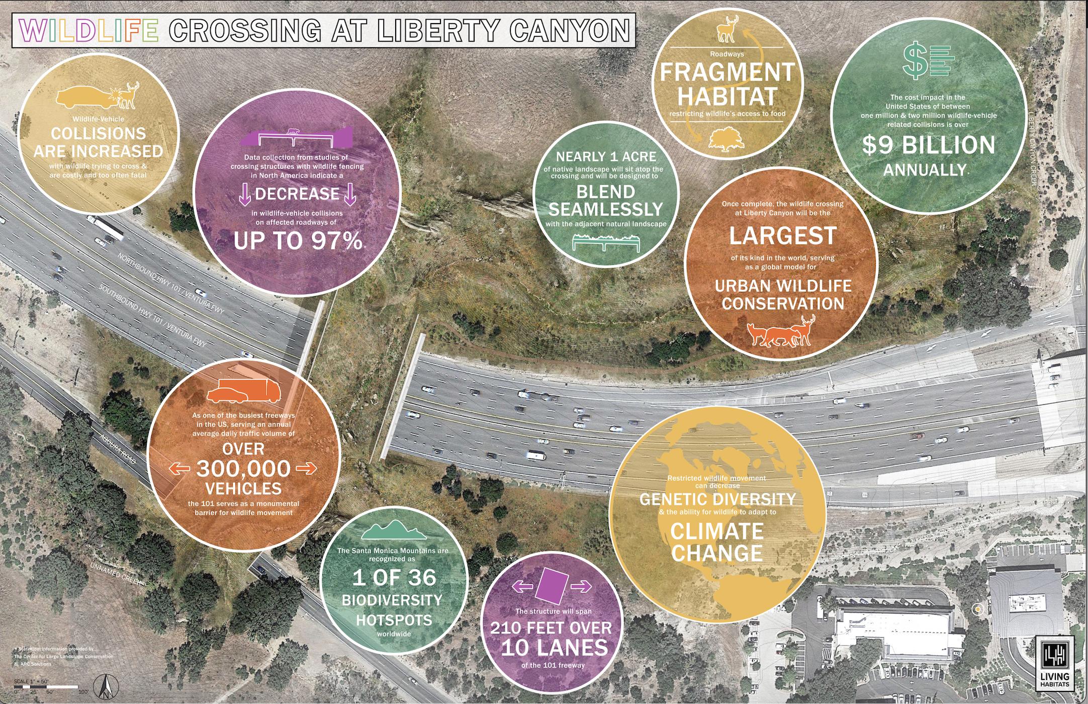 NWF & Living Habitats - Crossing Impact Infographic