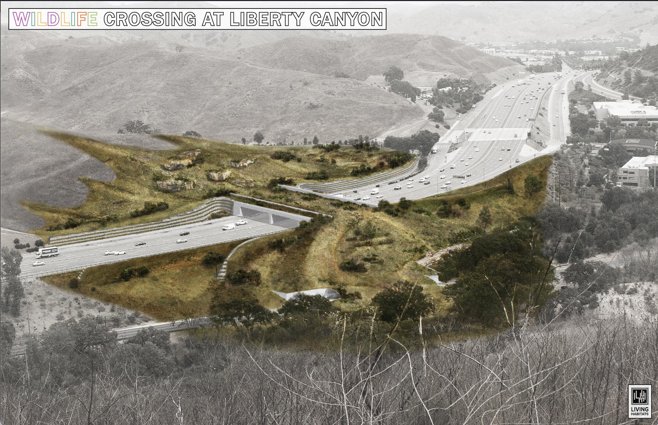 NWF & Living Habitats - Overlook Rendering