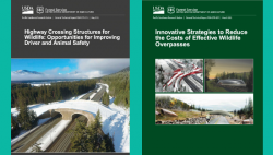 United States Forest Service Reports Outline Benefits of Wildlife Crossings and Offer Guidance on Effective Design